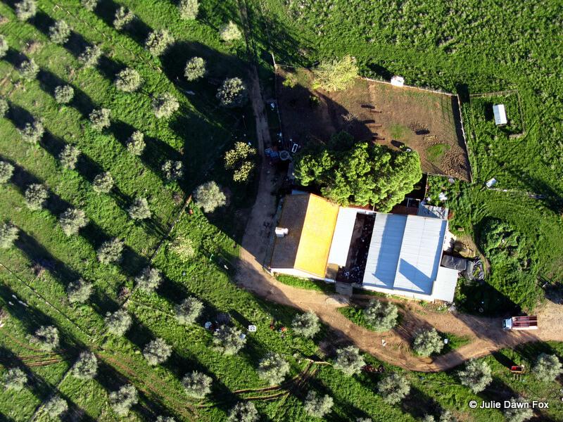aerial view of a farmhouse, Alentejo