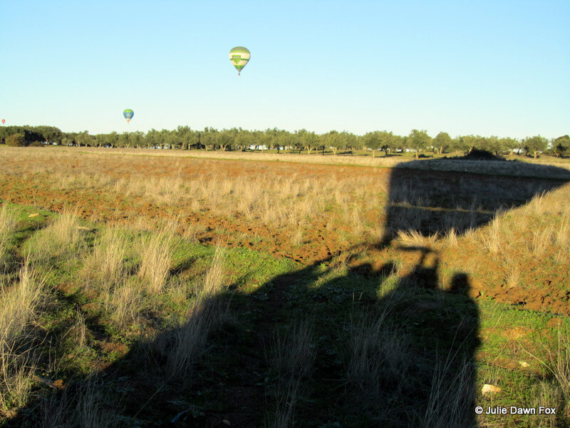 shadow of a hot air balloon landing in a field