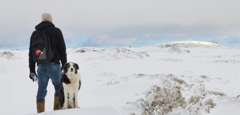 Man and dog on a snow hike, Serra da Estrela, Portugal