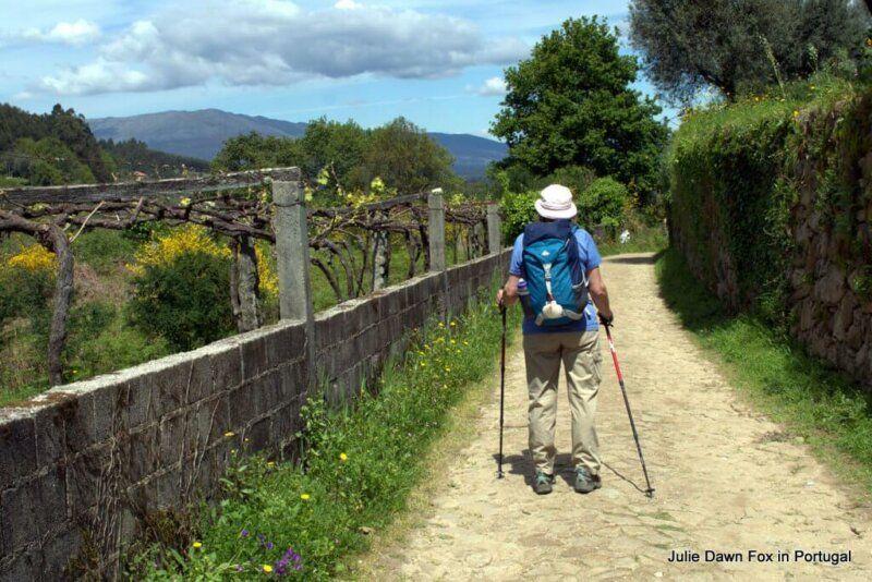 Pilgrim on cobbled road near Ponte de Lima, Portuguese Way of St. James