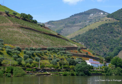 Visit Douro Valley. Budget day trip itinerary