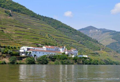 Wine estates by the River Douro