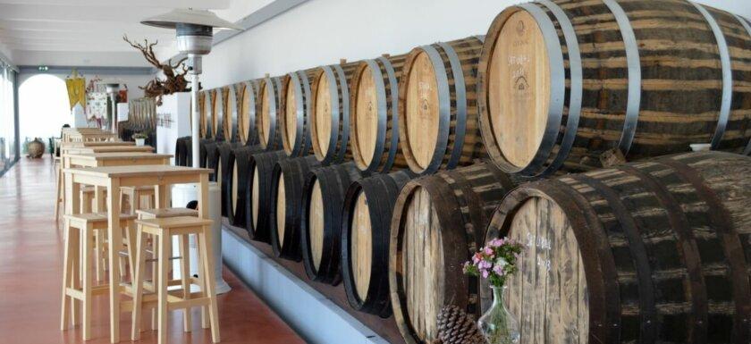 Tasting room at Quinta do Piloto winery