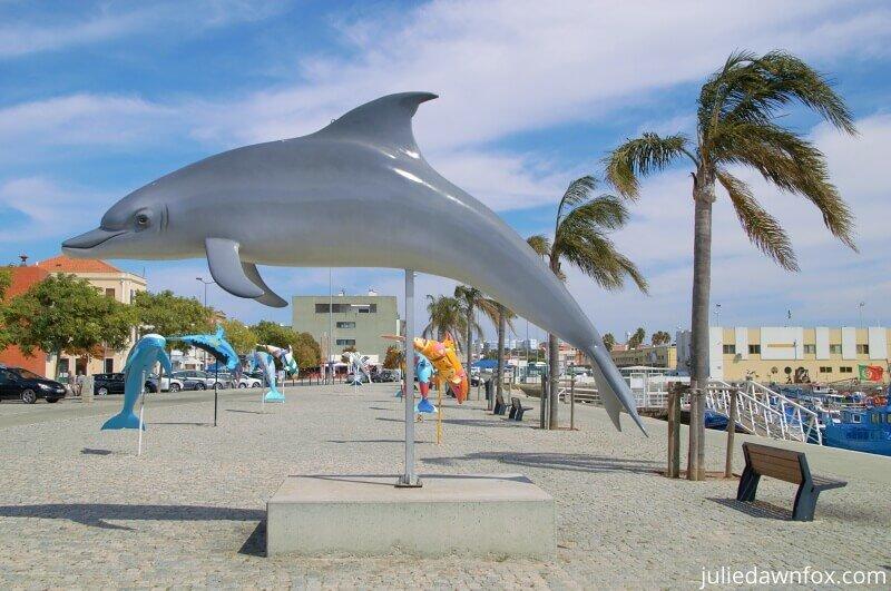 Dolphins in Setubal