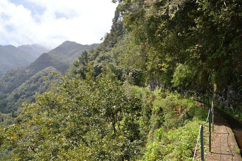 Levada do Rei, Madeira walks. One of the best things to do in Madeira