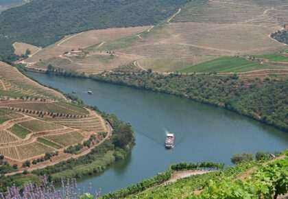 View of Douro river.